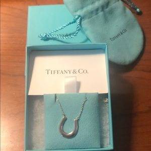 Tiffany & Co sterling silver horseshoe necklace